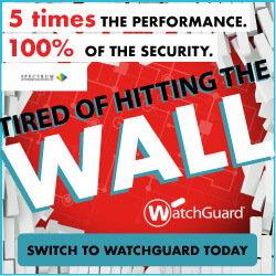 Watchguard Get Over the WALL Banner Ads Standard