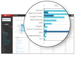 Complete Visibility into Application Usage